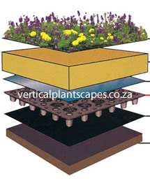 Green Roofs South Africa